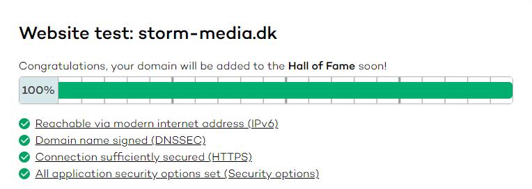 Hjemmeside sikkerhedstest